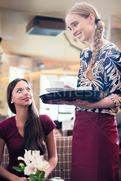 Friendly waitress serving coffee in a stylish restaurant Stock photo © Kzenon