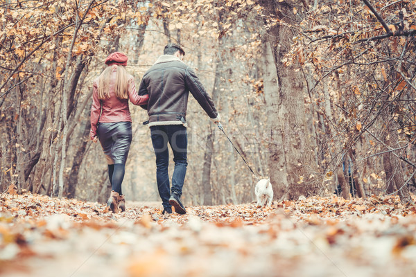 Woman and man in the fall strolling with their dog in the park Stock photo © Kzenon
