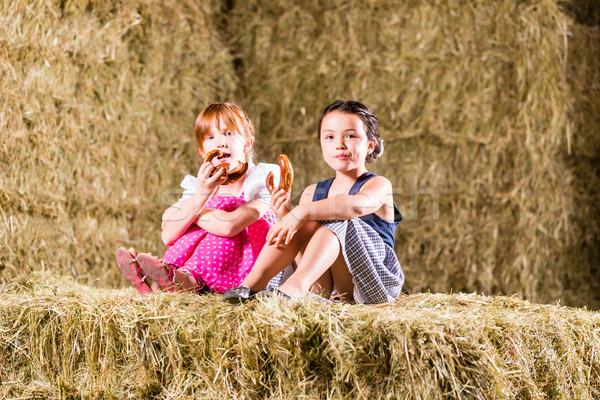 Bavarian girls sitting on hayloft with pretzels Stock photo © Kzenon