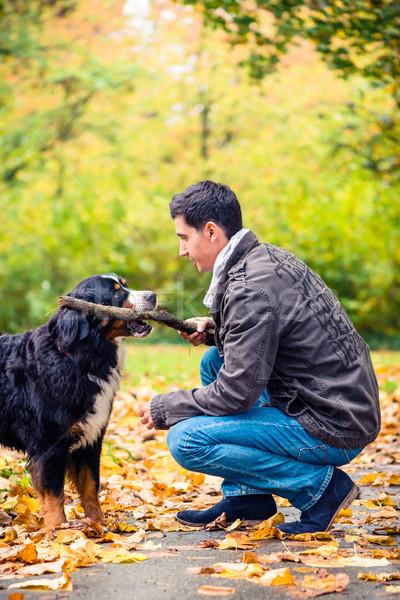 Man throwing stick for his dog to retrieve Stock photo © Kzenon