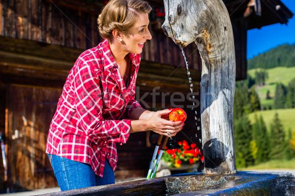 Kobieta pitnej dobrze górskich kabiny dziewczyna Zdjęcia stock © Kzenon