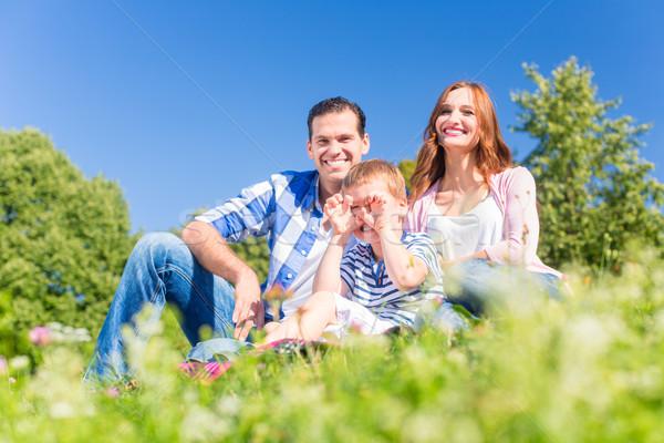 Familia sesión hierba verde hombre feliz Foto stock © Kzenon
