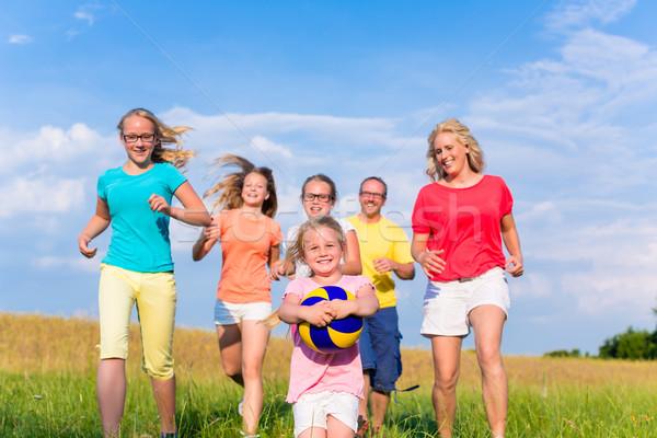 Family playing ball games on meadow Stock photo © Kzenon