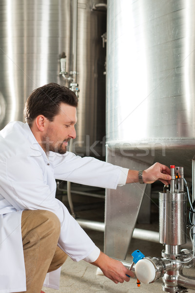 ビール 醸造所 立って 調べる 男 作業 ストックフォト © Kzenon