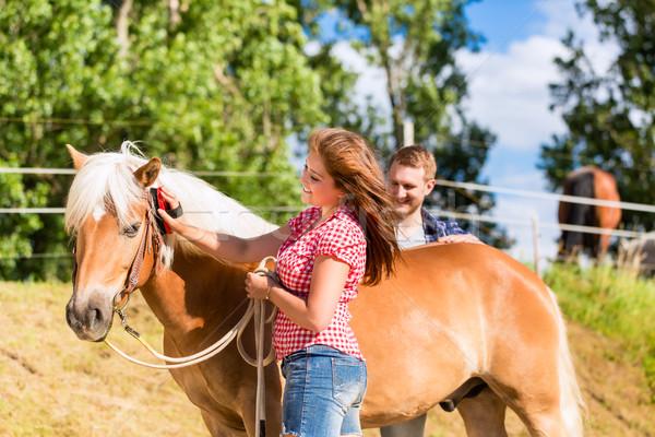 Pár ló póni farm lány férfi Stock fotó © Kzenon