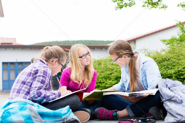 Studentów praca domowa szkoły wraz czytania książek Zdjęcia stock © Kzenon