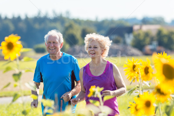 Cheerful senior couple jogging together outdoors in the countrys Stock photo © Kzenon