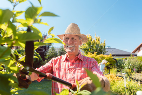 Portrait of a cheerful active senior man trimming shrubs in the garden Stock photo © Kzenon