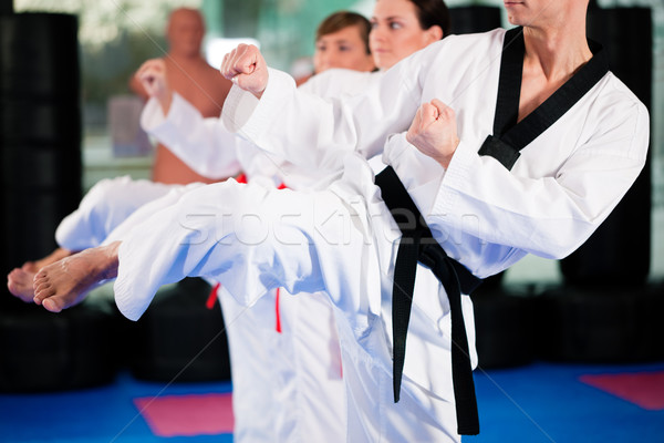 Martial Arts sport training in gym Stock photo © Kzenon