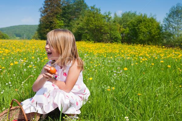 çocuk easter egg hunt çayır bahar mutlu Paskalya Stok fotoğraf © Kzenon