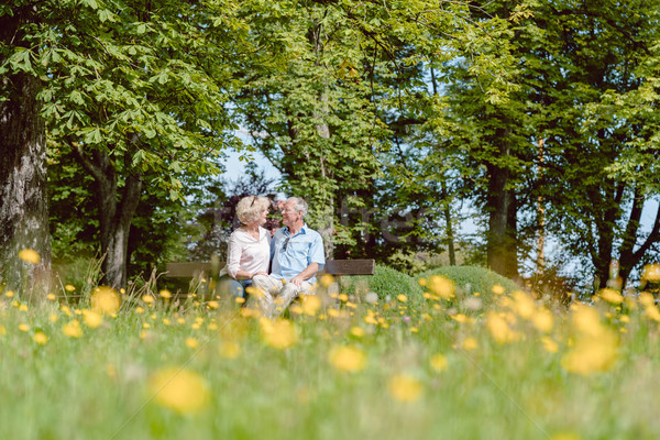 Romantic senior couple in love dating outdoors in an idyllic park Stock photo © Kzenon