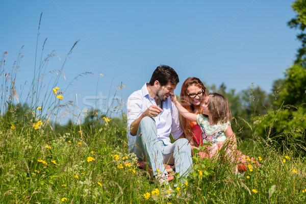 Família sessão prado verão dia Foto stock © Kzenon