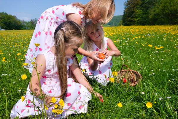 Foto stock: Ninos · huevos · pradera · primavera · Pascua