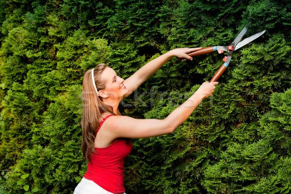 女性 庭園 植木屋 夏 少女 作業 ストックフォト © Kzenon