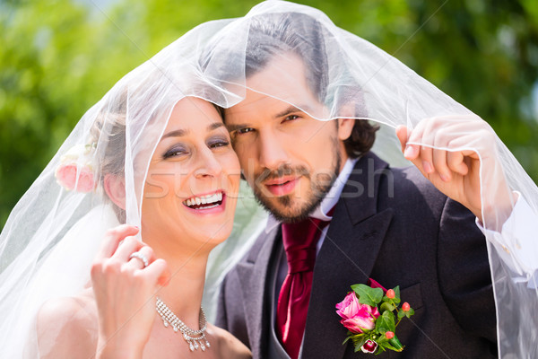 Stock photo: Wedding couple bride and groom hiding under veil
