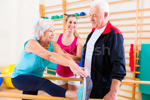 Senior at rehab in physical therapy Stock photo © Kzenon