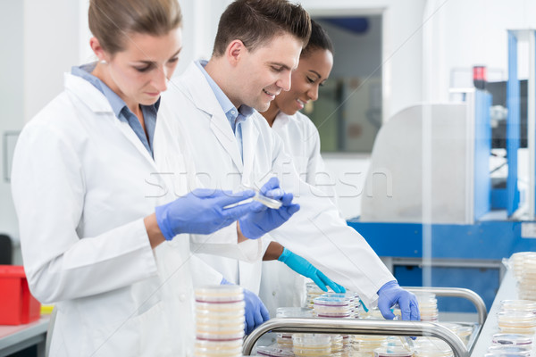 Group of researchers using scientific technology for test of ger Stock photo © Kzenon