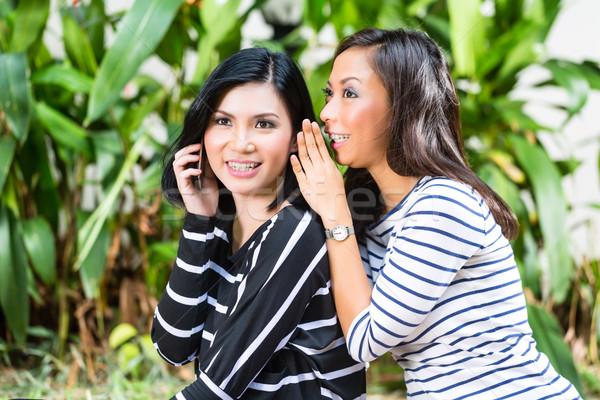 Two Asian girlfriends Stock photo © Kzenon