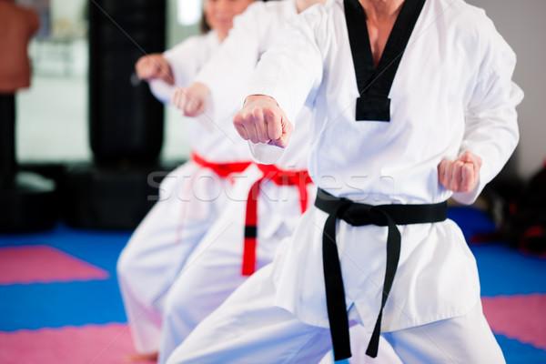 Dövüş sanatları spor eğitim spor salonu insanlar egzersiz Stok fotoğraf © Kzenon
