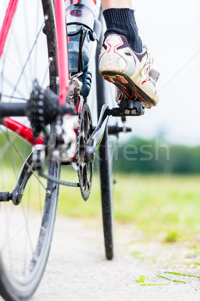 Chain, pedal, rear wheel and sprocket of bike Stock photo © Kzenon