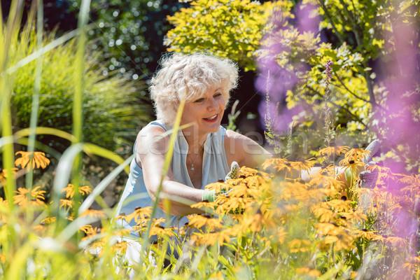 Senior Frau tätig Lifestyle genießen Ruhestand Stock foto © Kzenon
