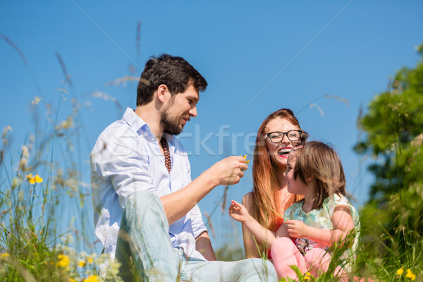 Family playing with wildflowers on meadow Stock photo © Kzenon