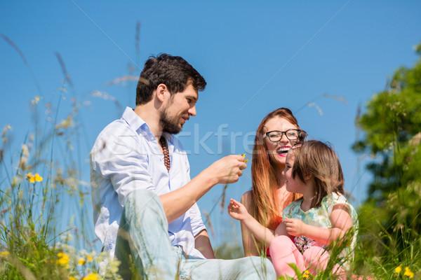 Család játszik vadvirágok legelő ül fű Stock fotó © Kzenon