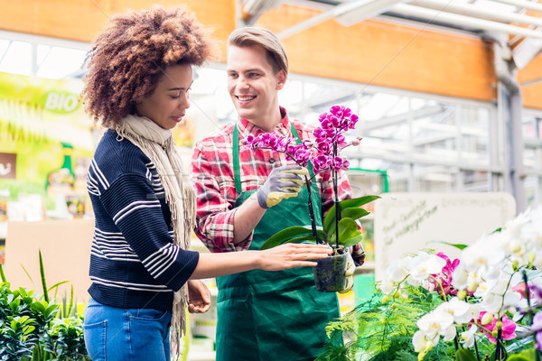 Cheerful vendor showing to a customer a potted pink orchid for sale Stock photo © Kzenon