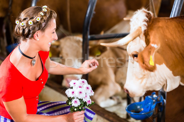 Countrywoman touching cow in cowhouse Stock photo © Kzenon