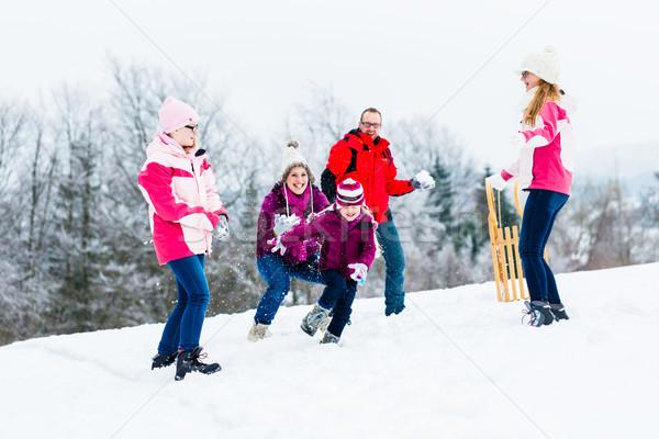 家族 子供 雪玉 戦う 冬 子供 ストックフォト © Kzenon