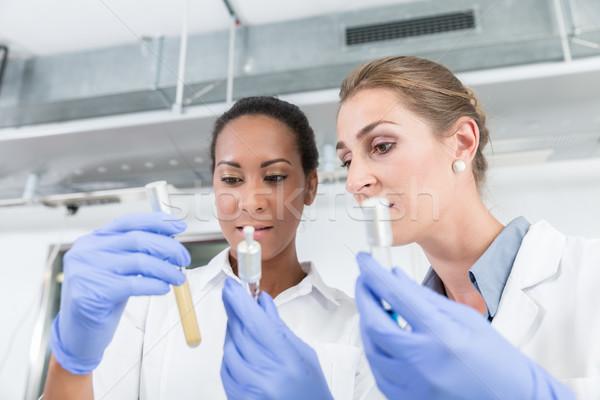 Photo stock: Recherche · laboratoire · instrument · parler