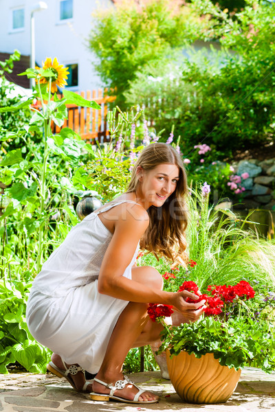 Woman looking at her flowers in the garden Stock photo © Kzenon