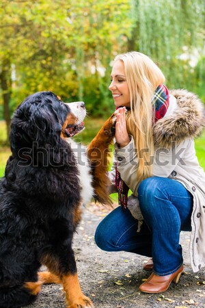 Stock photo: Woman playing with her dog and toy in autumn park