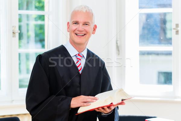 адвокат прав фирма бизнеса Сток-фото © Kzenon