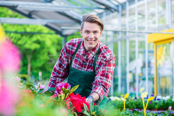 Handsome young man smiling happy while working as florist Stock photo © Kzenon