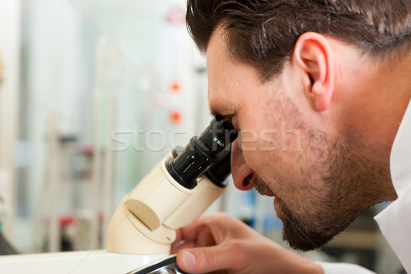 Beer Brewer in food laboratory examining Stock photo © Kzenon