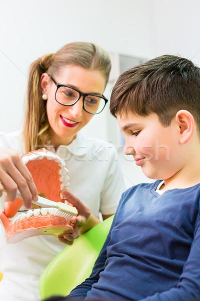 Tandarts uitleggen jongen schoonmaken tand vrouwelijke Stockfoto © Kzenon