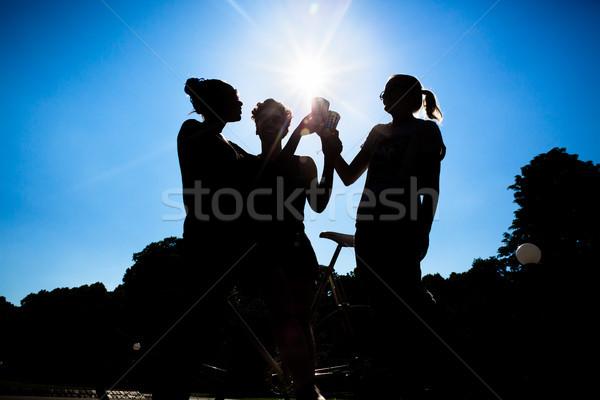 Sziluett barátok pirít italok ragyogó nap Stock fotó © Kzenon