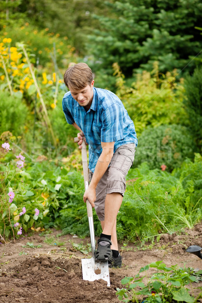 Gardening - digging over the soil Stock photo © Kzenon