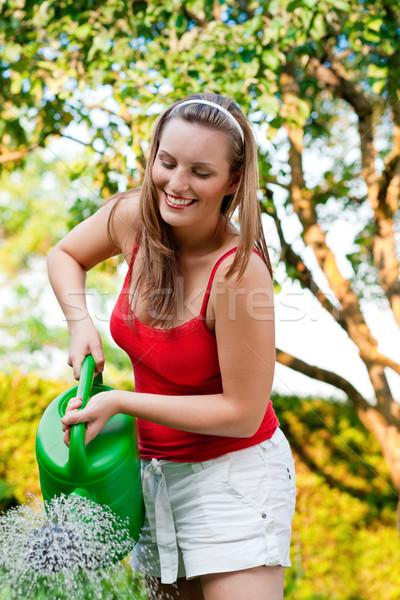 Woman in garden watering flowers Stock photo © Kzenon