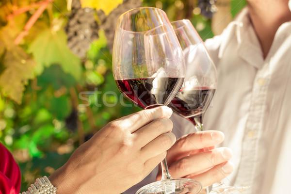Vintner couple clinking wine glasses in vineyard Stock photo © Kzenon
