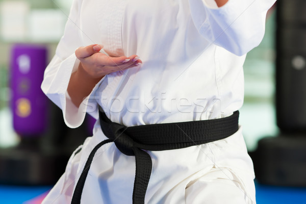 боевыми искусствами спорт подготовки спортзал женщину Сток-фото © Kzenon