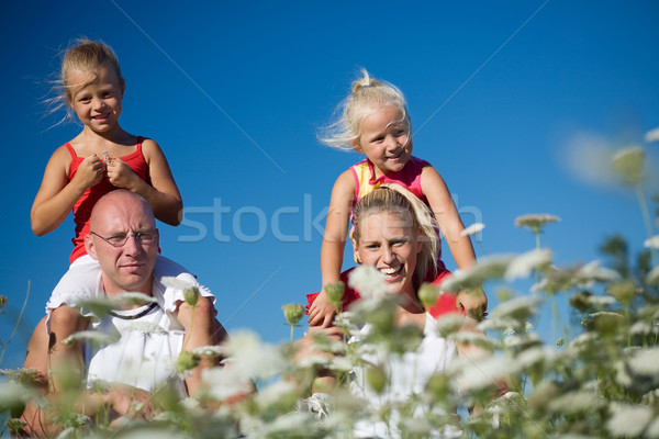 Family in yarrow Stock photo © Kzenon