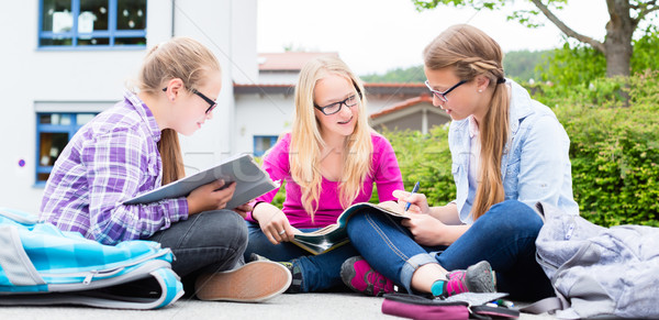 Students doing homework for school together Stock photo © Kzenon