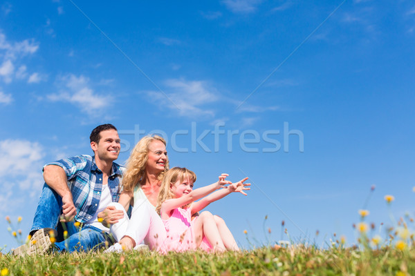 Family sitting in green grass on meadow Stock photo © Kzenon