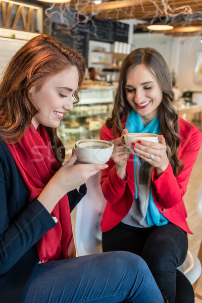 Two young and beautiful women drinking together hot chocolate Stock photo © Kzenon