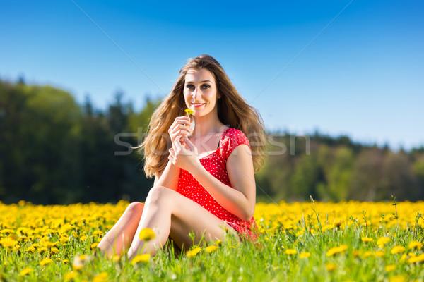 Meisje lentebloem weide paardebloem jong meisje vergadering Stockfoto © Kzenon
