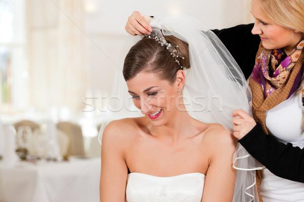 Stock fotó: Stylist · felfelé · menyasszonyok · hajviselet · menyasszonyi · fátyol