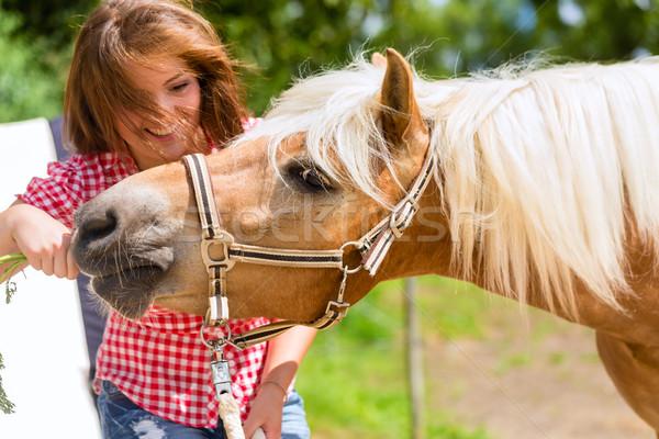Woman feeding horse on pony farm Stock photo © Kzenon