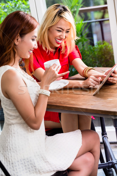 Two stylish female friends browsing the internet Stock photo © Kzenon